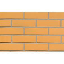 Клинкерная плитка Feldhaus Klinker R200 amari liso, 240*71*9  мм